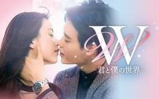 韓ドラ☆W-君と僕の世界-